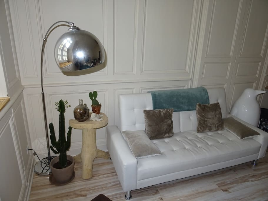 Petit canapé-lit si besoin / Small Sofa Bed if needed