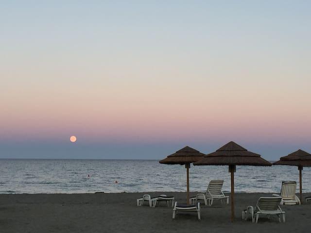 Bungalow 500m de la plage - San-Giuliano - Bungalow