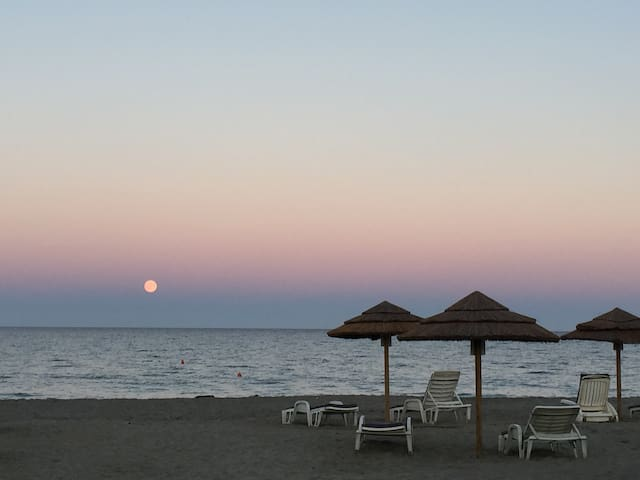Bungalow 500m de la plage - San-Giuliano