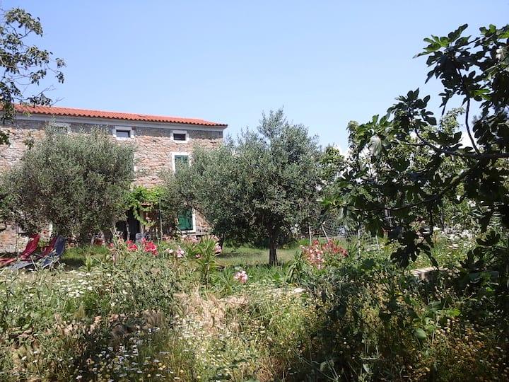 Apartment Farmtourism Medljan 1