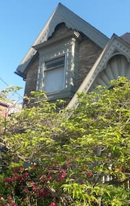 Victorian Home in Dwtn St. T - 聖托馬斯(Saint Thomas) - 獨棟