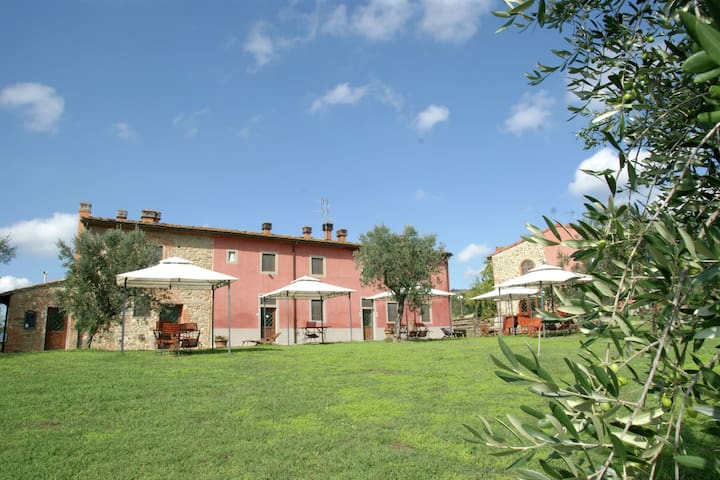 Cozy Holiday Home in Capraia e Limite with Pool