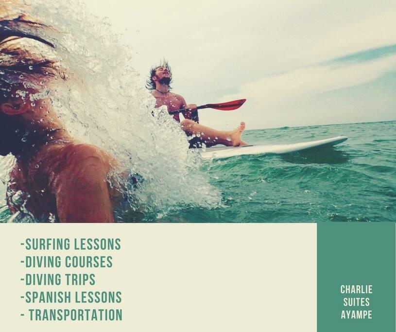 Services Surf Classes-