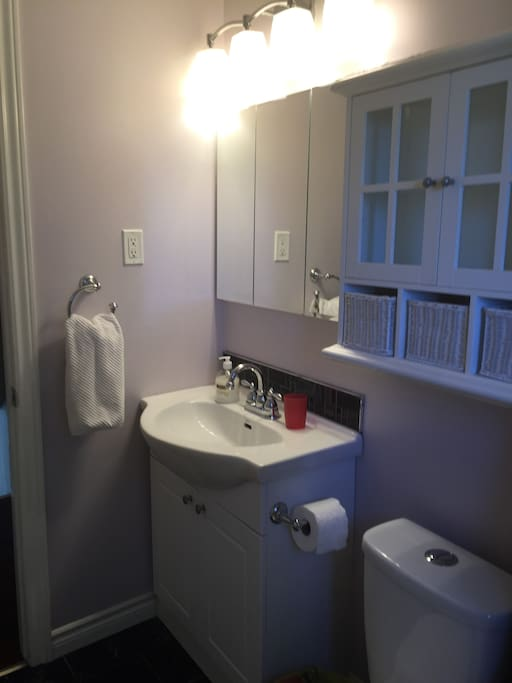 Built in medicine cabinet, lots of storage in bathroom.