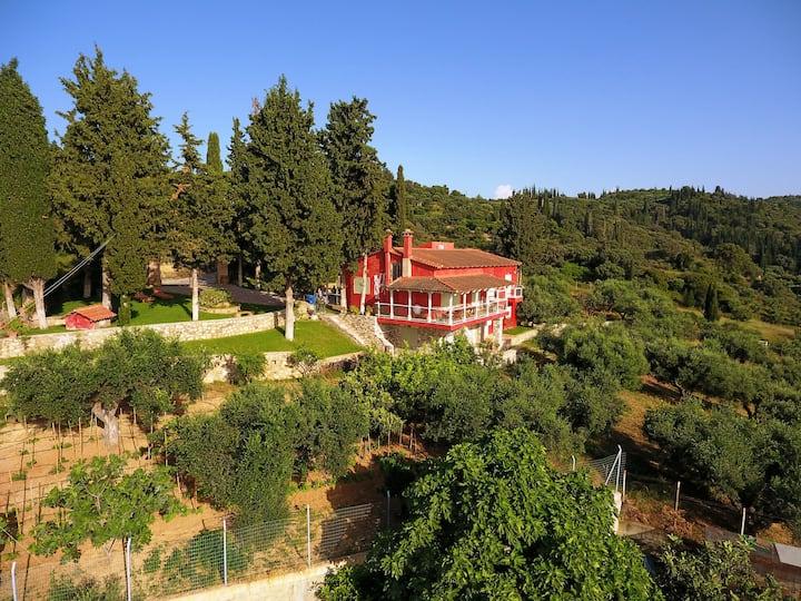 Sea View Villa with 4 bedrooms -  grECOrama