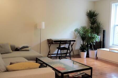 Large 2 bedrooms Plateau Mont-Royal - Montréal - Apartment