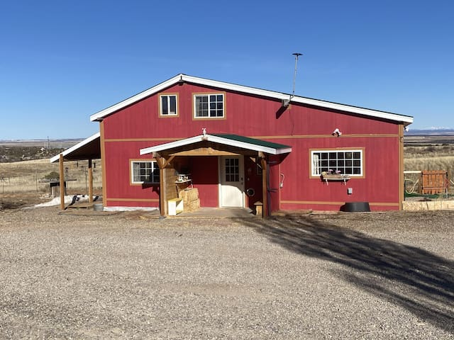 Muddy Paws Ranch - a one of a kind pet friendly ranch with amazing views!