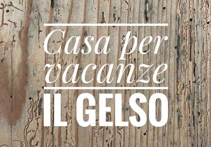Appartamento per vacanze IL GELSO -Rovereto (Tn)