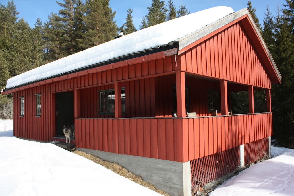 The new cabin during winter