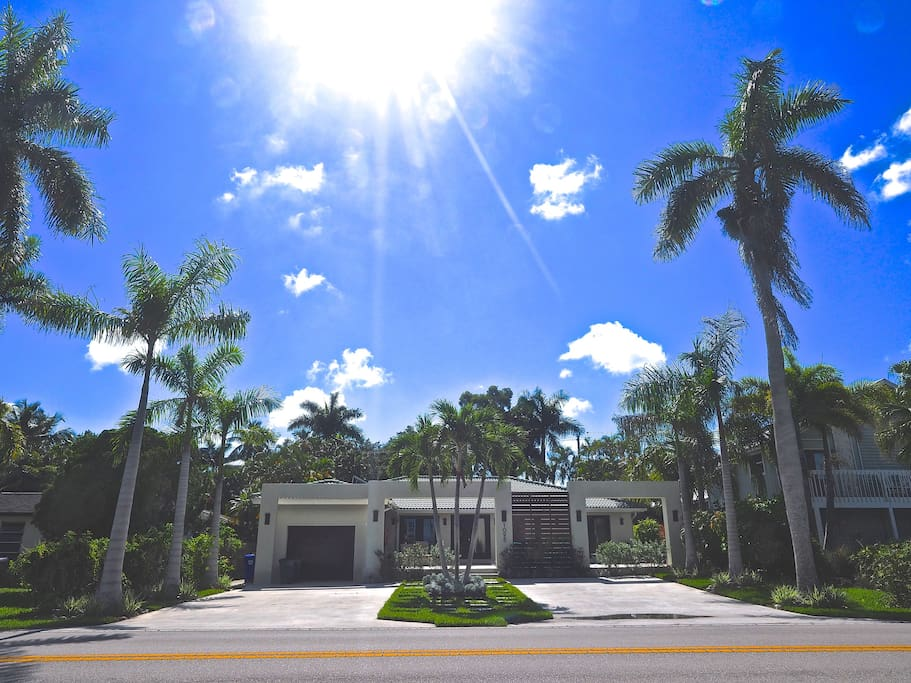 Royal palm lined drive way in royal harbour