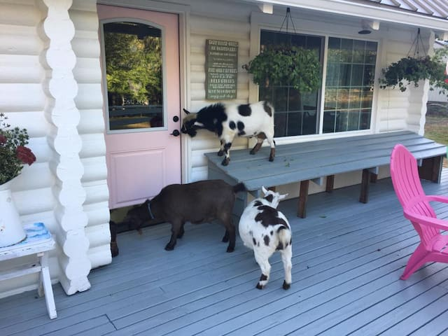 The Farmhouse Retreat Experience