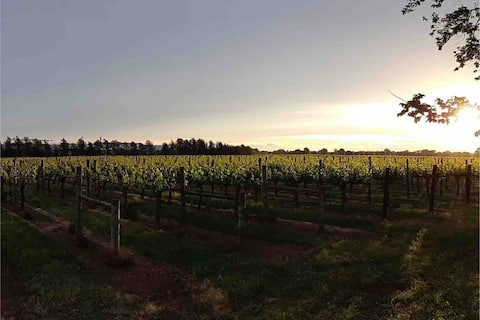 Milawa Vineyard Views Accommodation - Unit 1 of 2