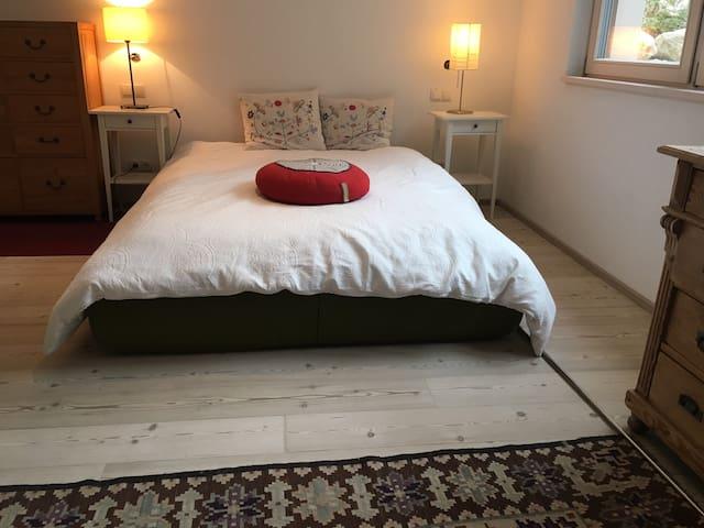 Modern stylish apartment in villa close to city