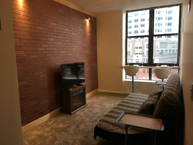 Entire Apartment + Airport Pickup + Great Location - Boston - Wohnung