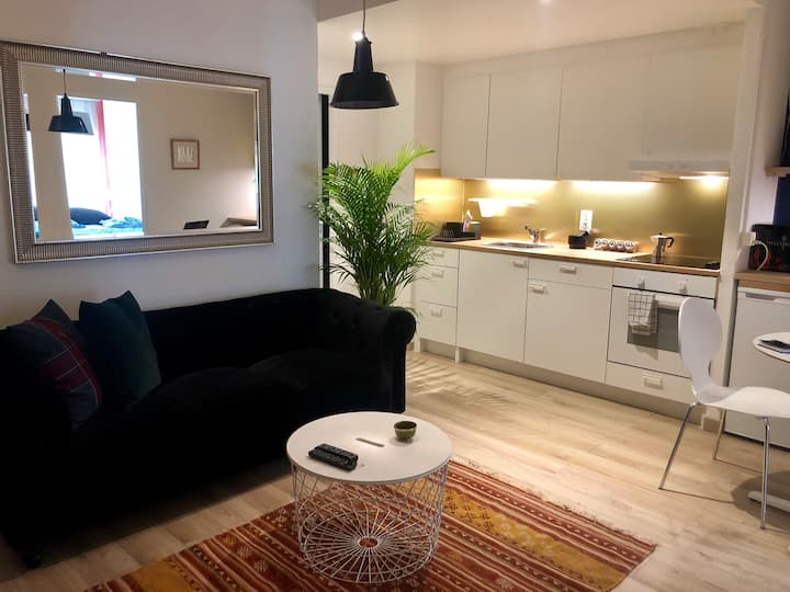 Cool & Central 2 bedroom in heart of Eaux-vives