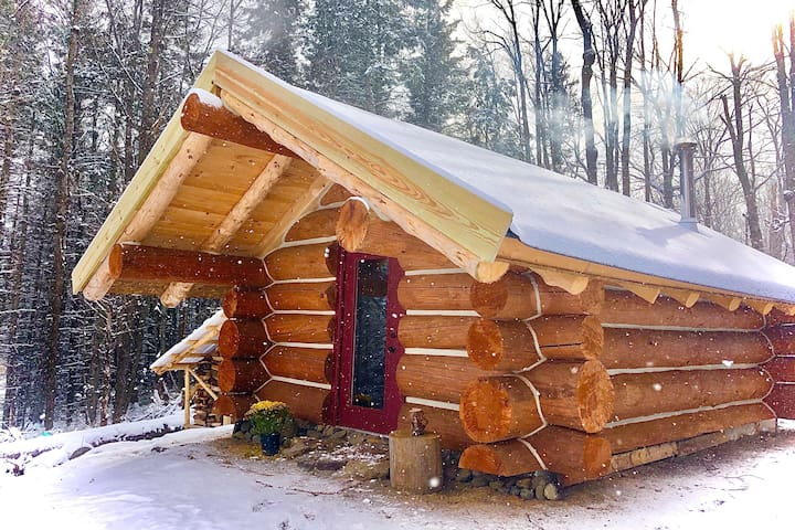 The Analog Cabin: A Tiny Cabin in the Woods