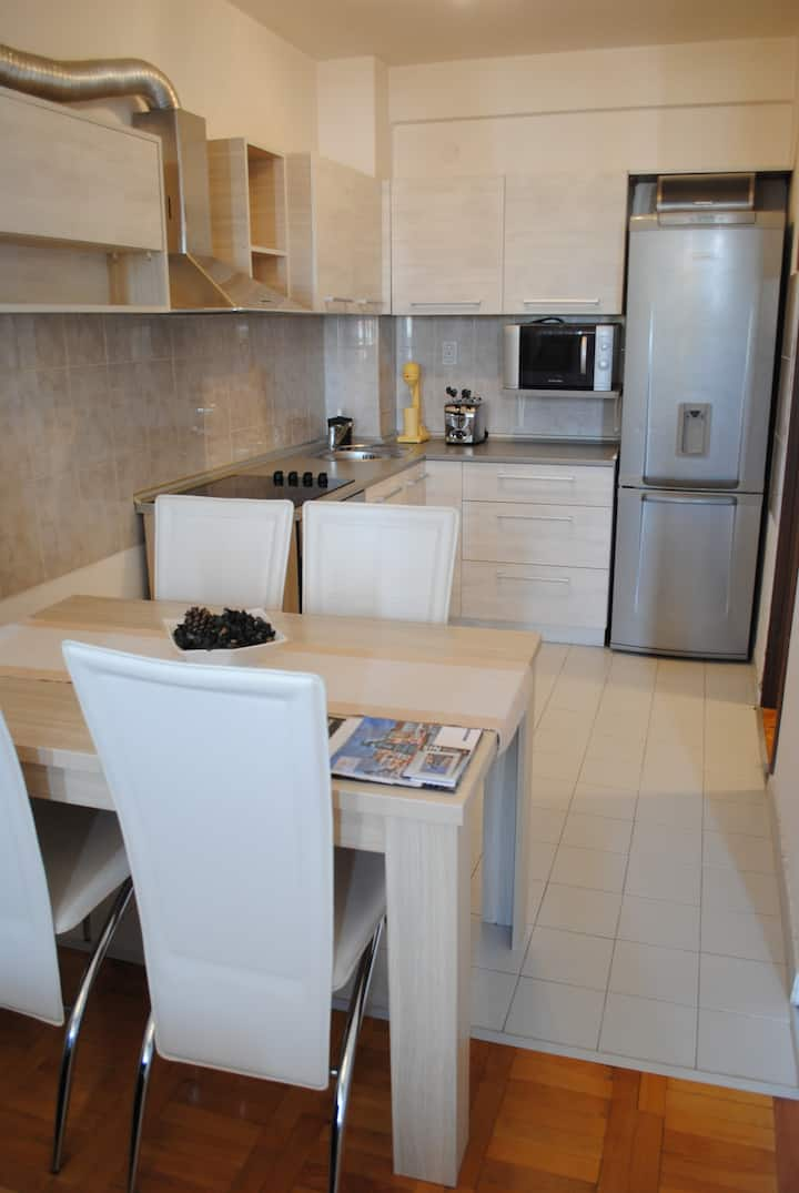 Luxury Apartment in downtown Nis