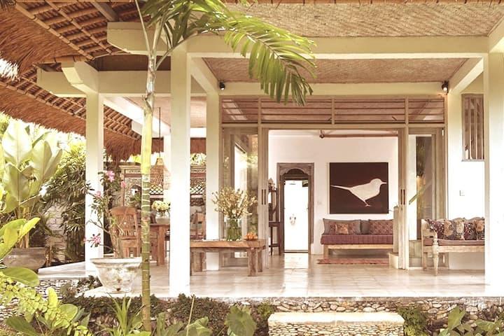 Architect Designed  Natural Villa 3