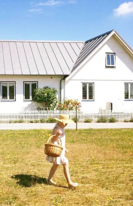 Huset sett från hästhagen/vägen