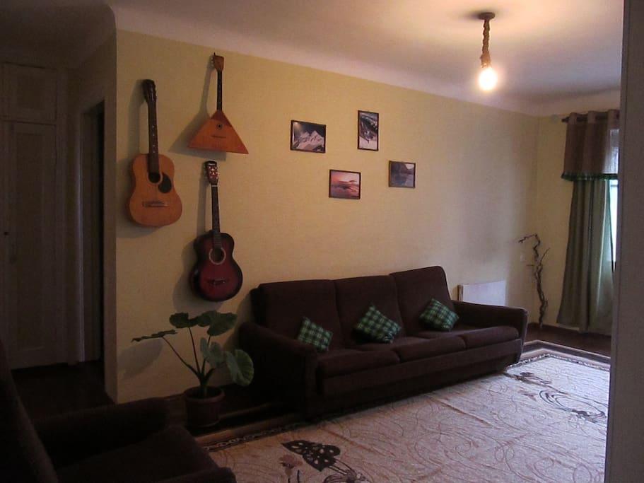 Зал, есть диван раскладной, гитара