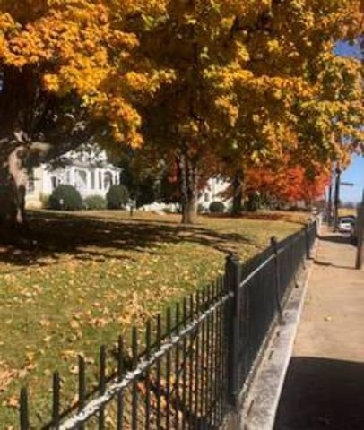 Staunton is a hot spot for autumn's serious leaf peepers. You can see why!