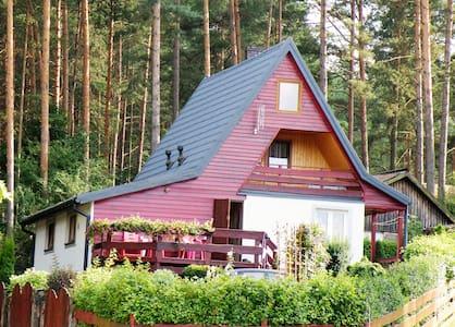 Masurienhaus - Kobyłocha - Haus