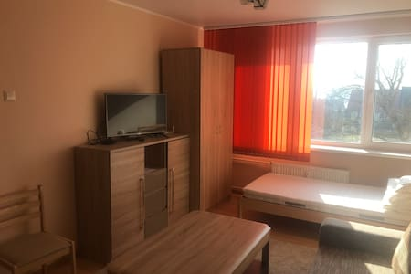 Newly renovated apartment for rent