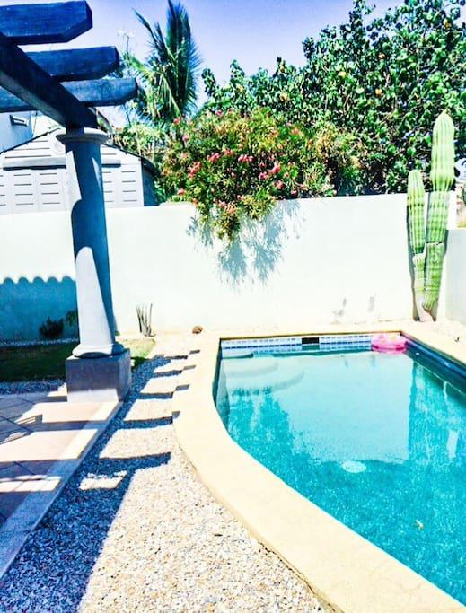 Beautiful private pool. Nice harmonious garden