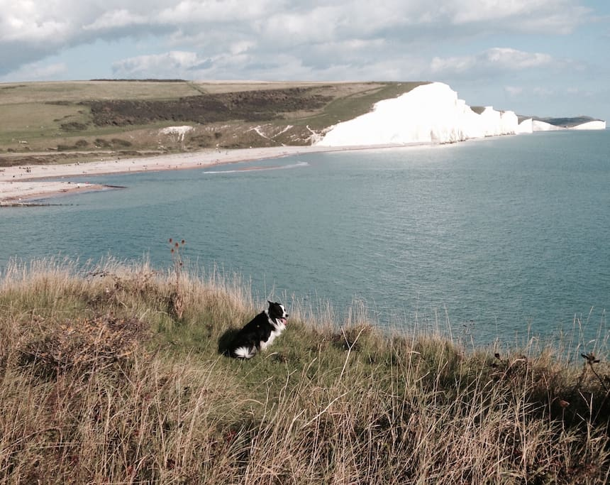 View of Seven Sisters on our doorstep with Yoshi our border collie.