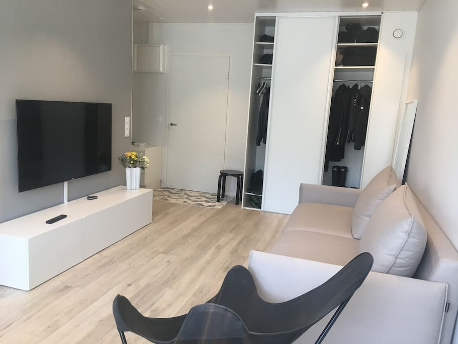 Living room with smart TV and sofa with an option for a bed
