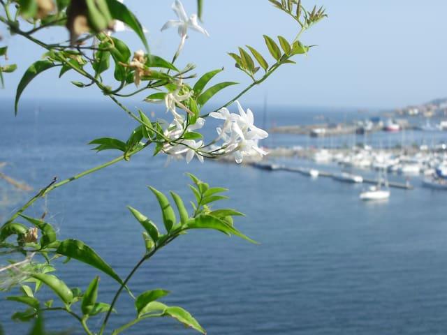 Primera línea de playa Coroso Ria de Arousa - Ribeira - Appartement