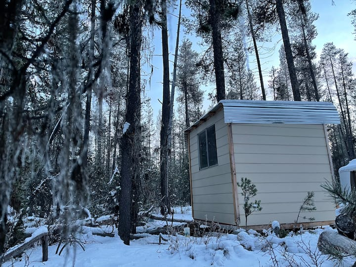 Forest Bunkhouse Behind Crater Lake