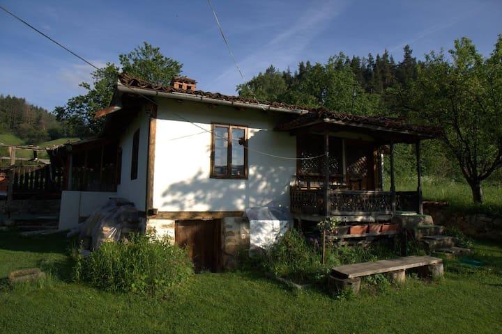 """Guest house """"Kushteto"""""""