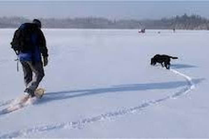 Enjoy a winter walk on the lake.