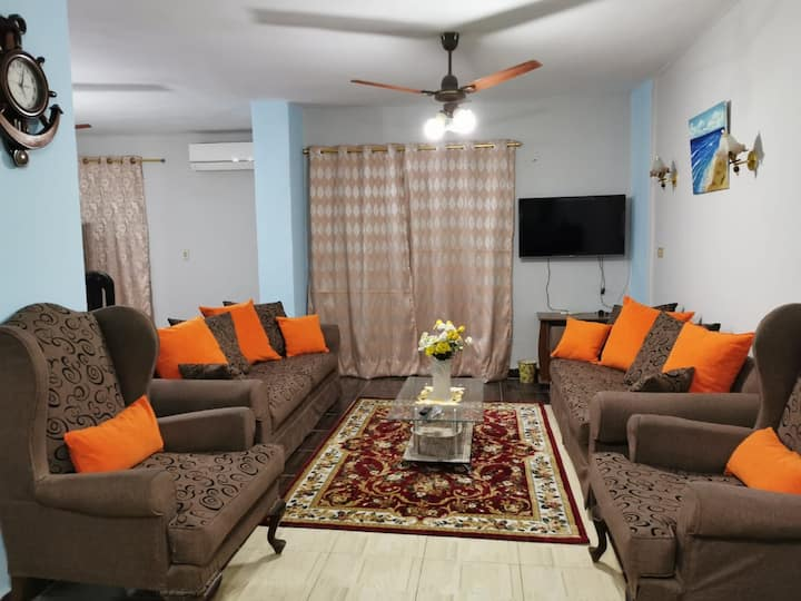 luxurious furnished apartment in nasr city