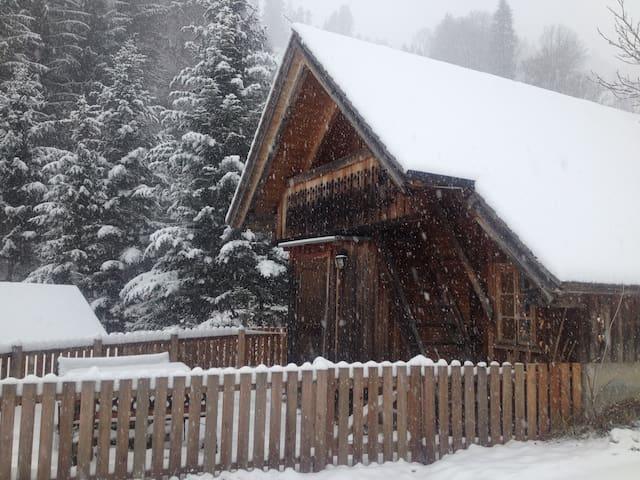 Erster Schnee 20. 11. 2018!