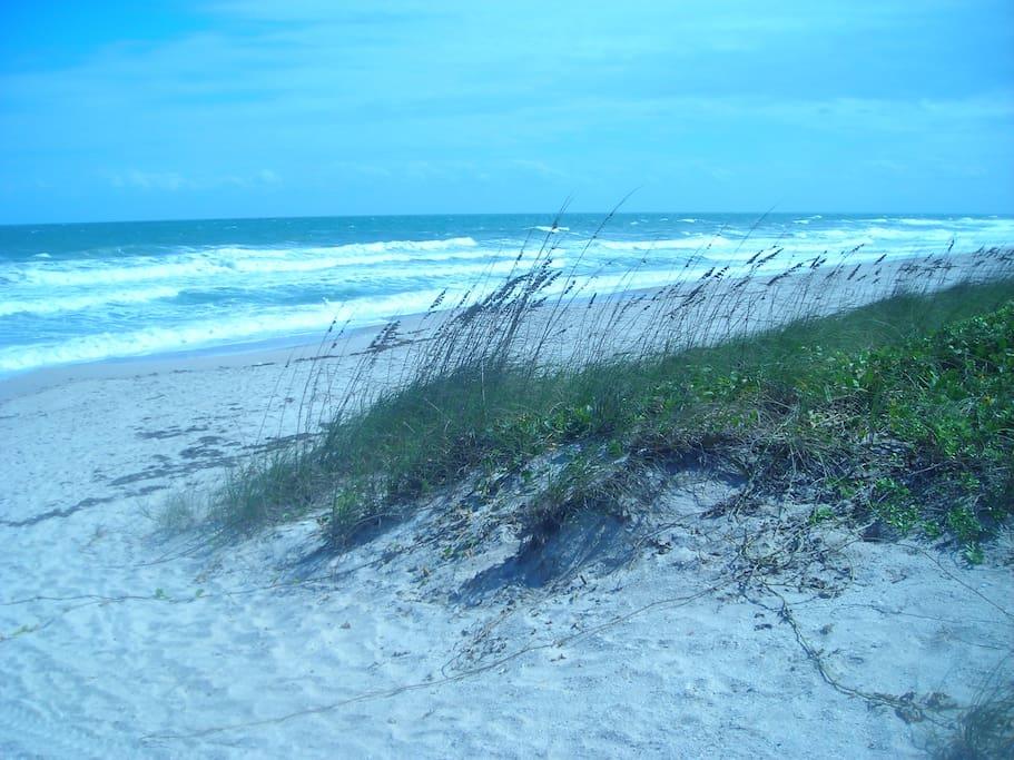 our neighborhood beach,a stroll away
