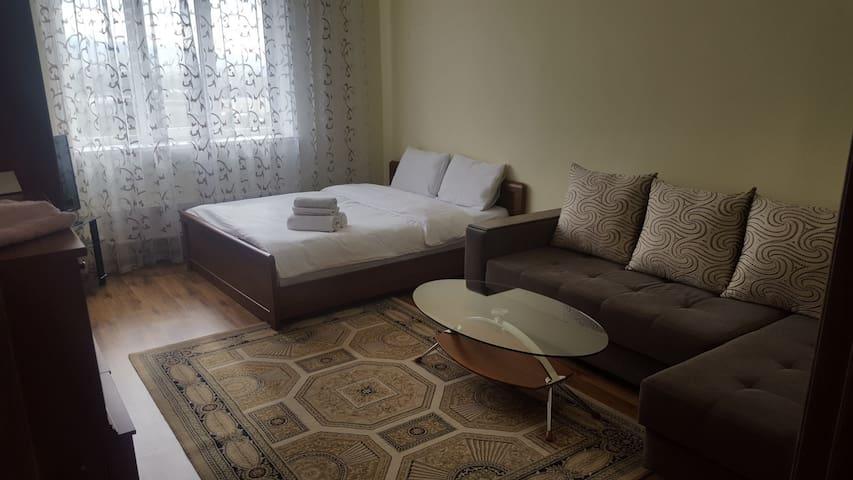 1-комнатная квартира, Алматы, ул. Бальзака 8А(01)
