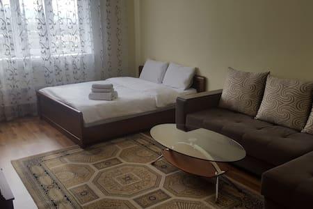 1-комнатная квартира, Алматы, ул. Бальзака 8А(01) - Алматы
