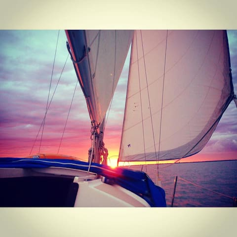 Beautiful Sailboat Athena - Velas Marina - Velas - Boat