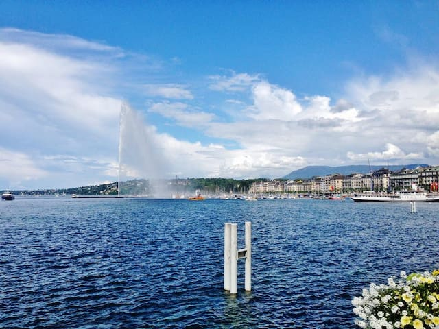 Sweet apart in heart of Geneva - 5/6 persons - Geneve - Huoneisto