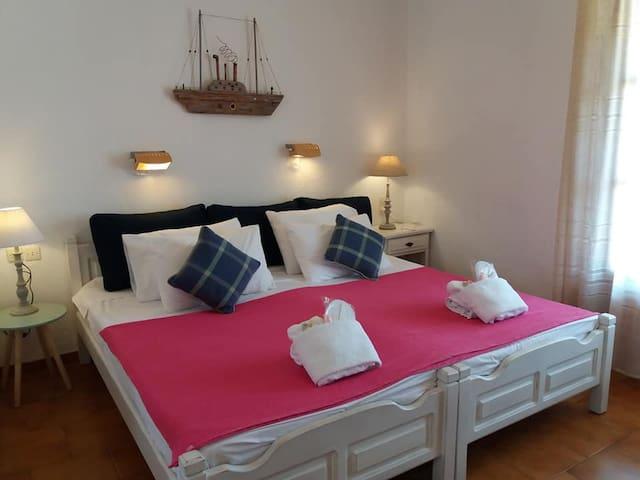 Anofli Suites- Junior Suite with Terrace