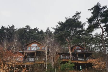 Beautiful forest Pension (201) - Yongpyeong-myeon, Pyeongchang-gun - Pensão (Coreia)