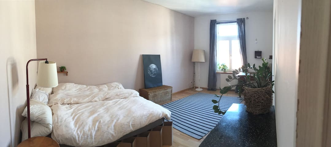 quiet, clean and friendly - Frankfurt am Main - Apartment