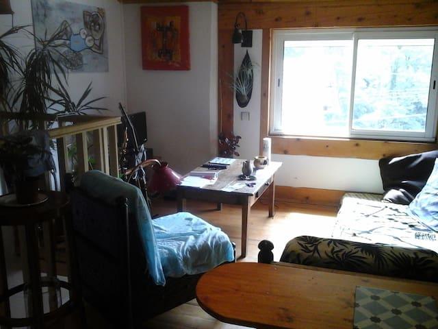 Petit nid douillet - Villefranche-de-Rouergue - Appartement