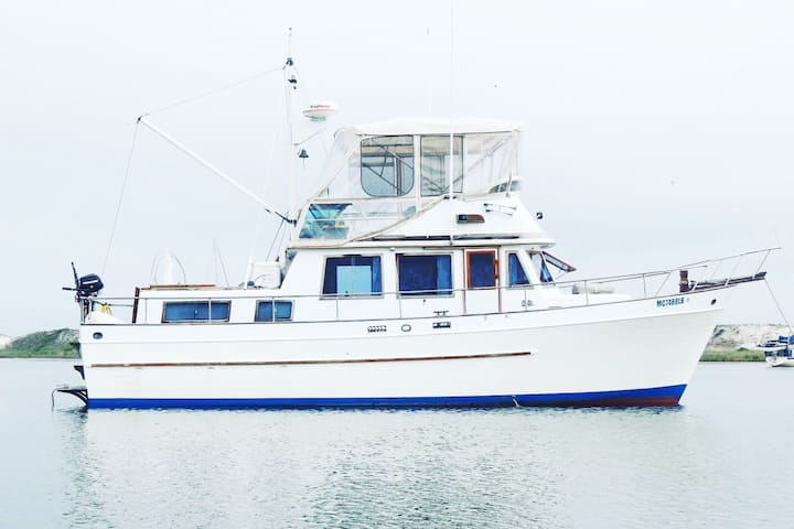 Seagull - Boat Rental in Beautiful Perdido Key