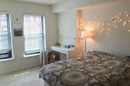 Sunny Corner Apartment in Heart of Logan Circle - Washington - Apartment