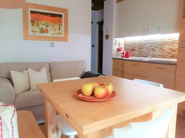 La tua casa nelle Dolomiti App. M. Aiarnola