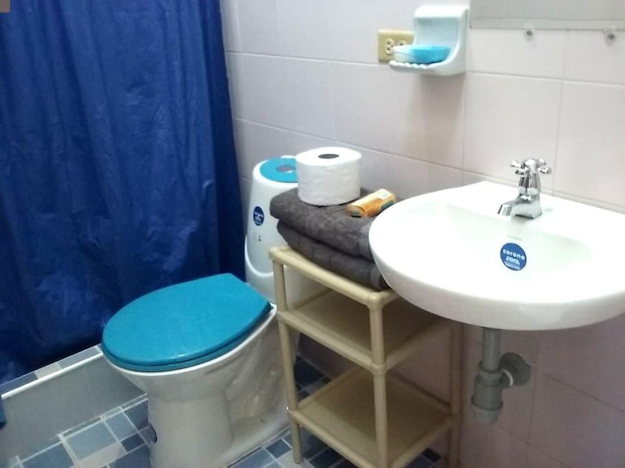 HABITACIÓN PRIVADA DEL HUESPED: Baño con toallas, papel y jabón.