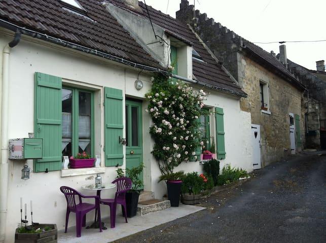 Maison de charme à 15mn de Soissons - Maast-et-Violaine
